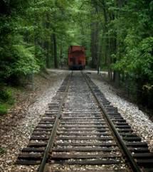 Affaire « Colas Rail » : annulation et atténuations des sanctions des acteurs de l'entente anticoncurrentielle (Paris, Pôle 5, ch. 5-7, 29 juin 2010, « Colas Rail », RG n° 2009/19724 ; BOCCRF n° 7, 5 août 2010)