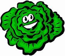 """L'obligation de sécurité due au consommateur qui glisse sur une feuille de salade fait la une des """"JT"""" ? A propos d'une solution ancienne et de problèmes réglés depuis fort longtemps !"""