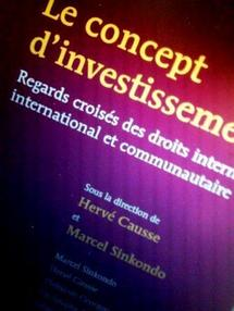 Le concept d'investissement, éd. Bruylant, 2011, dir. M. SINKONDO et H. CAUSSE, avec Ch. GOYET, C. TILLOY, Ch. FARDET, F. MANIN, G. DARMON, Th. GEORGOPOULOS.