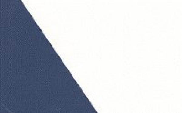 Affaire EADS. L'AMF s'interdit de faire appel : une Autorité des marchés financiers sans autorité dans la défense des investisseurs