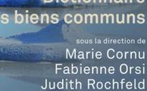 """Du remarquable """"Dictionnaire des biens communs"""", PUF Quadrige, 2017, dir. M. Cornu, F. Orsi et J. Rochfeld."""